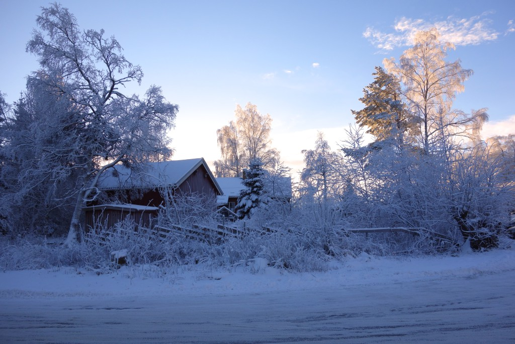 A winter day on the outskirt of Oslo.  Photo: Eline Oftedal